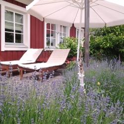 schwedenhaus-impression-lavendel-2