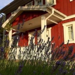 schwedenhaus-impression-lavendel