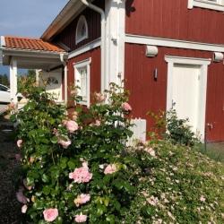 schwedenhaus_villa_freja_lindberg_spezial_seite ansicht_garten_rot_aladomo_2
